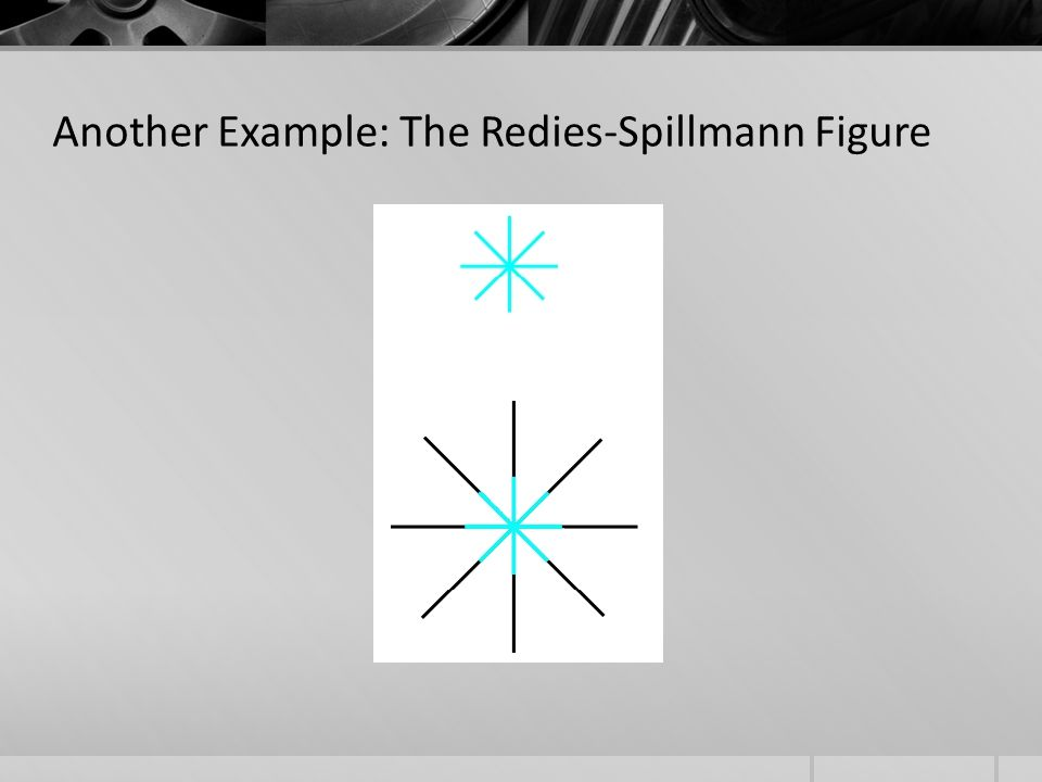 Another Example: The Redies-Spillmann Figure