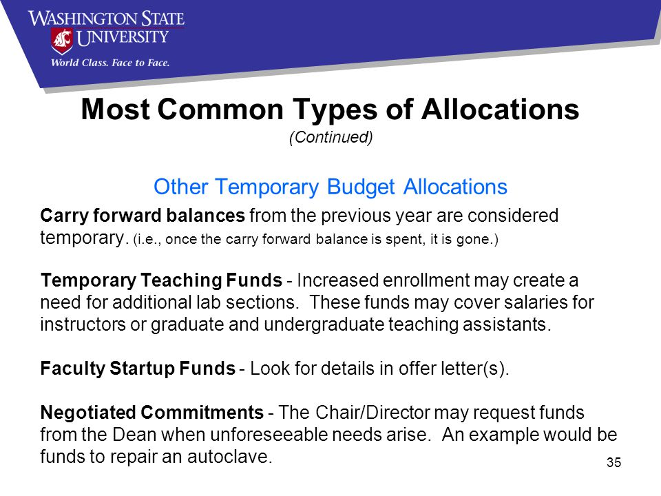 Most Common Types of Allocations (Continued) Other Temporary Budget Allocations Carry forward balances from the previous year are considered temporary.