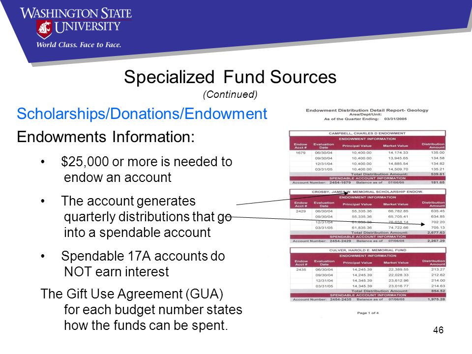 46 Specialized Fund Sources (Continued) Scholarships/Donations/Endowments Endowments Information: $25,000 or more is needed to endow an account The account generates quarterly distributions that go into a spendable account Spendable 17A accounts do NOT earn interest The Gift Use Agreement (GUA) for each budget number states how the funds can be spent.