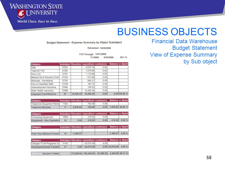 58 BUSINESS OBJECTS Financial Data Warehouse Budget Statement View of Expense Summary by Sub object