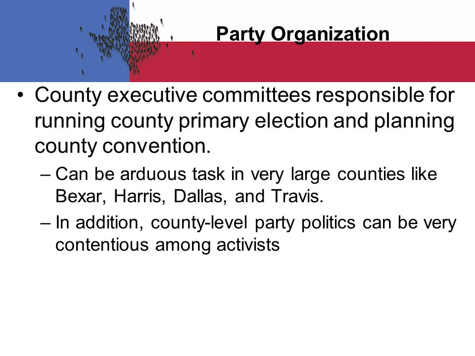 Party Organization County executive committees responsible for running county primary election and planning county convention.