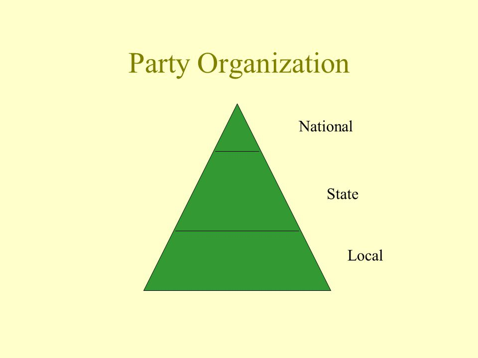 Party Organization National State Local