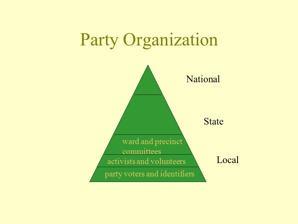 Party Organization National State Local party voters and identifiers activists and volunteers ward and precinct committees