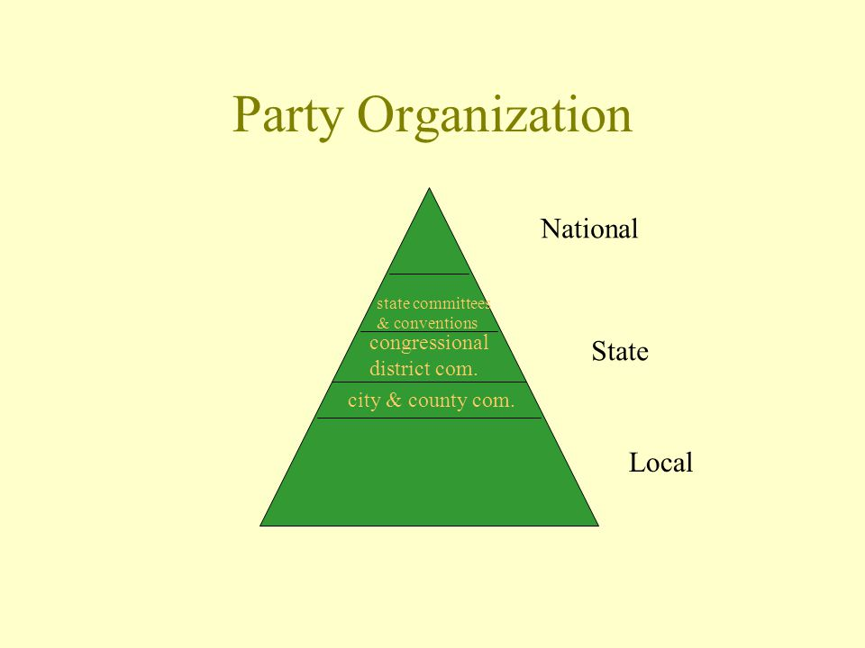 Party Organization National State Local city & county com.