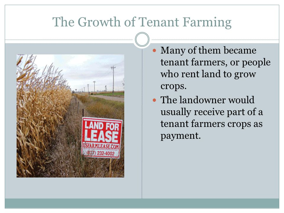 The Growth of Tenant Farming Many of them became tenant farmers, or people who rent land to grow crops. The landowner would usually receive part of a