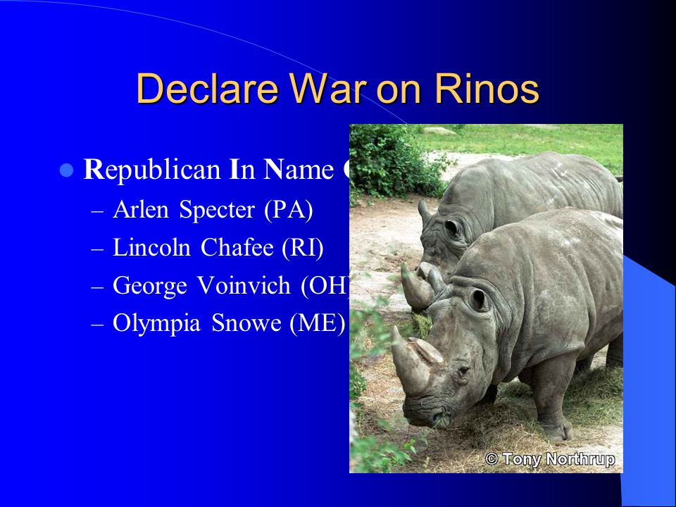 Declare War on Rinos Republican In Name Only – Arlen Specter (PA) – Lincoln Chafee (RI) – George Voinvich (OH) – Olympia Snowe (ME)