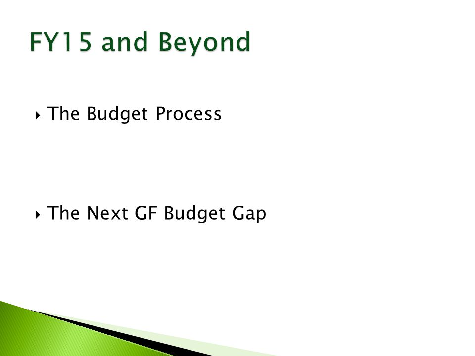  The Budget Process  The Next GF Budget Gap