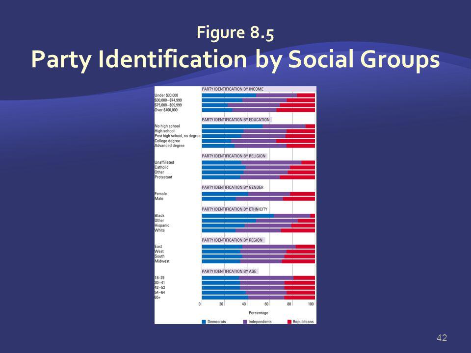 Party Identification  Party identification predisposes but does not mandate voting behavior  Factors affecting party identification:  Parental part