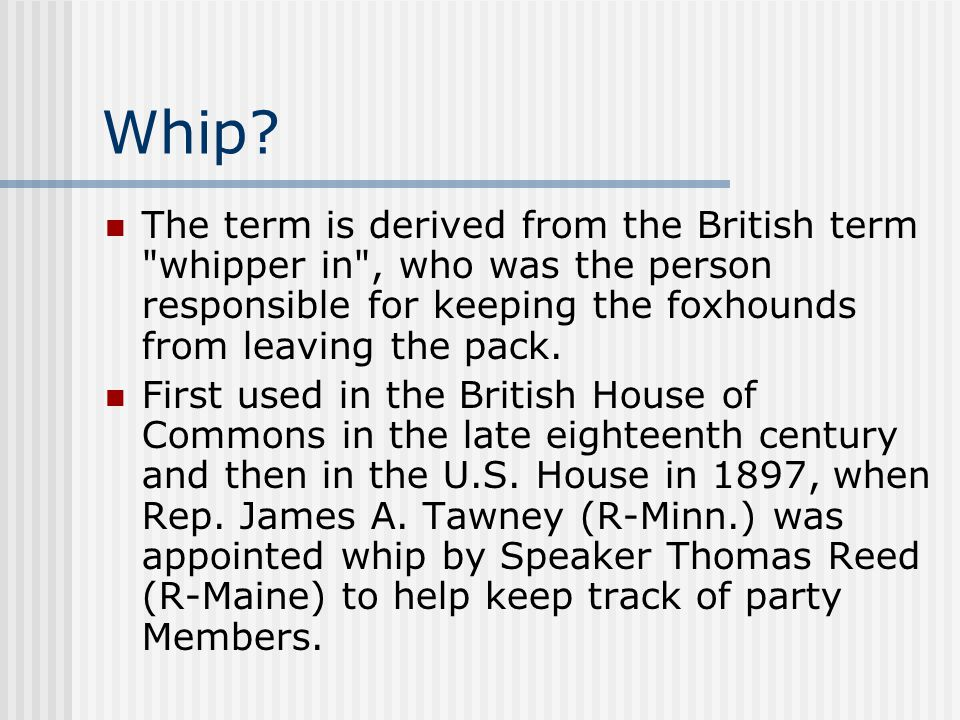 Whip? The term is derived from the British term