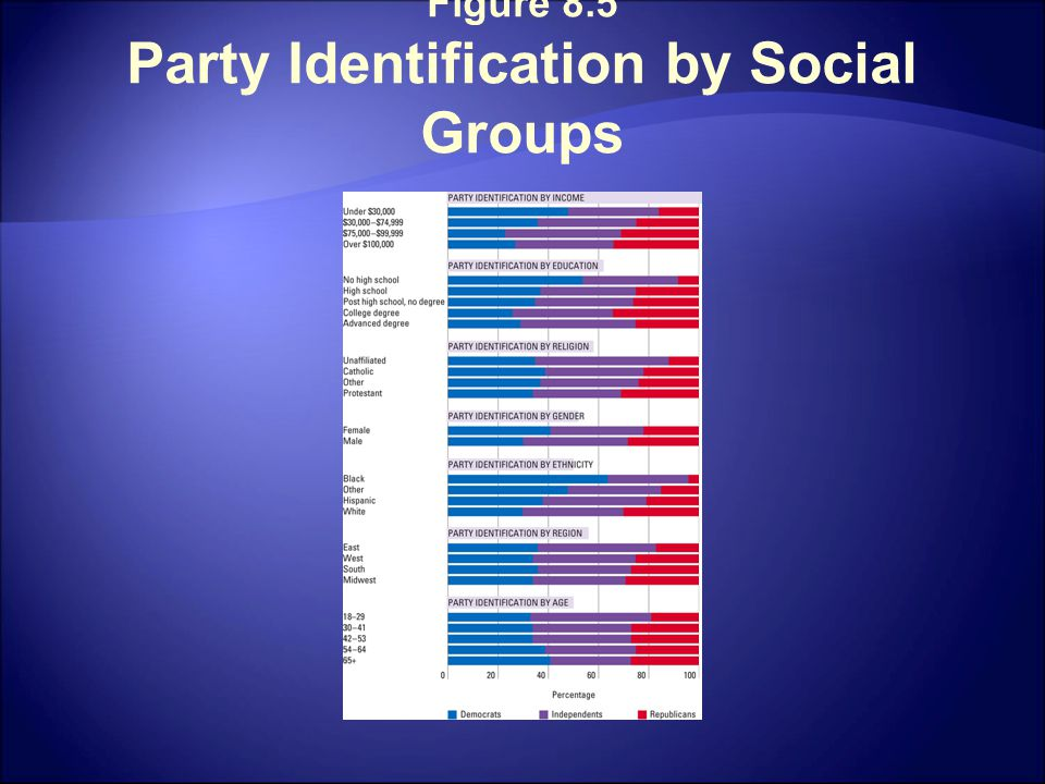 Figure 8.5 Party Identification by Social Groups