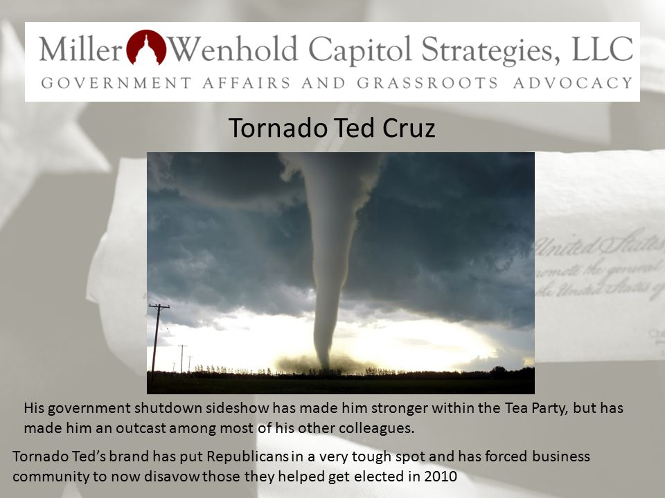 Tornado Ted Cruz Tornado Ted's brand has put Republicans in a very tough spot and has forced business community to now disavow those they helped get elected in 2010 His government shutdown sideshow has made him stronger within the Tea Party, but has made him an outcast among most of his other colleagues.
