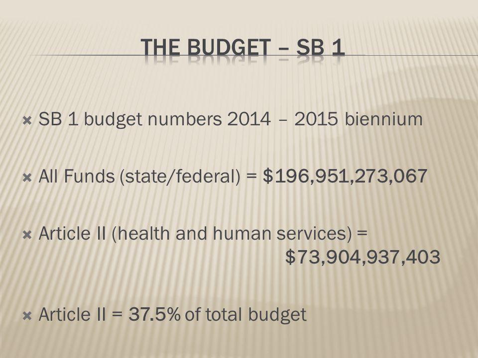 Texas Budget Grows Health Care Dollars Increase