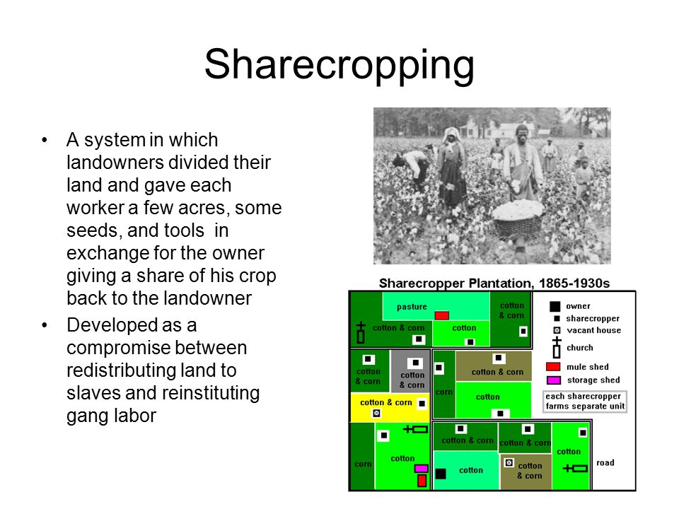 Sharecropping A system in which landowners divided their land and gave each worker a few acres, some seeds, and tools in exchange for the owner giving