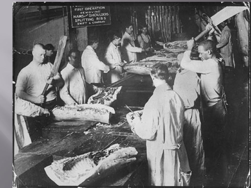  Written by Upton Sinclair  Talks about the horrors of the meat packing industry