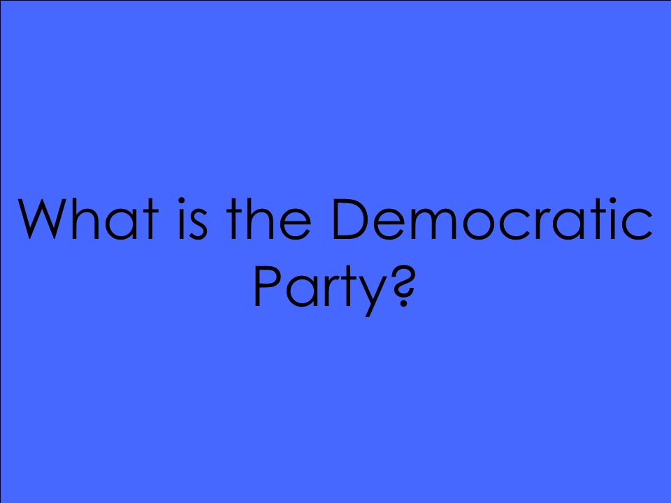 What is the Democratic Party?