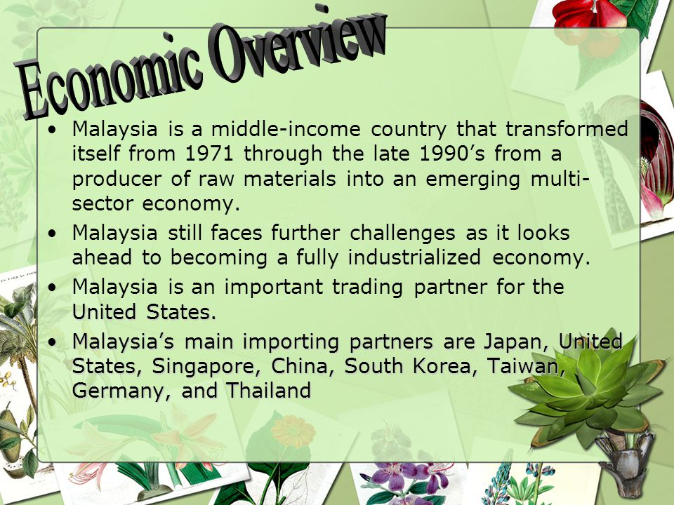 Malaysia is a middle-income country that transformed itself from 1971 through the late 1990's from a producer of raw materials into an emerging multi- sector economy.