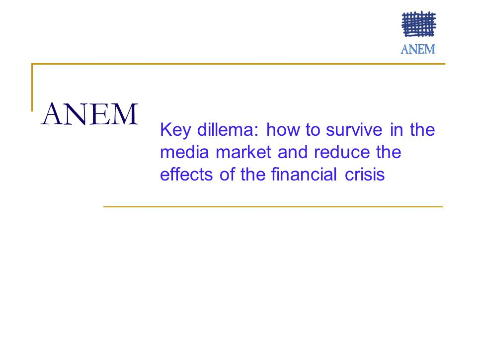 ANEM Key dillema: how to survive in the media market and reduce the effects of the financial crisis