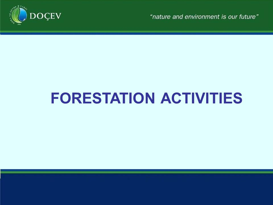 FORESTATION ACTIVITIES