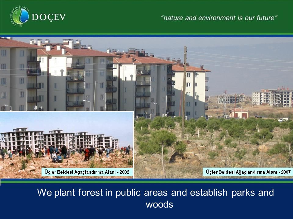 We plant forest in public areas and establish parks and woods