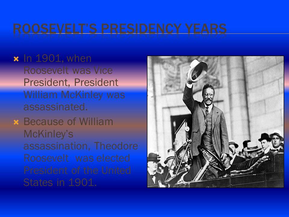 IIn 1901, when Roosevelt was Vice President, President William McKinley was assassinated.