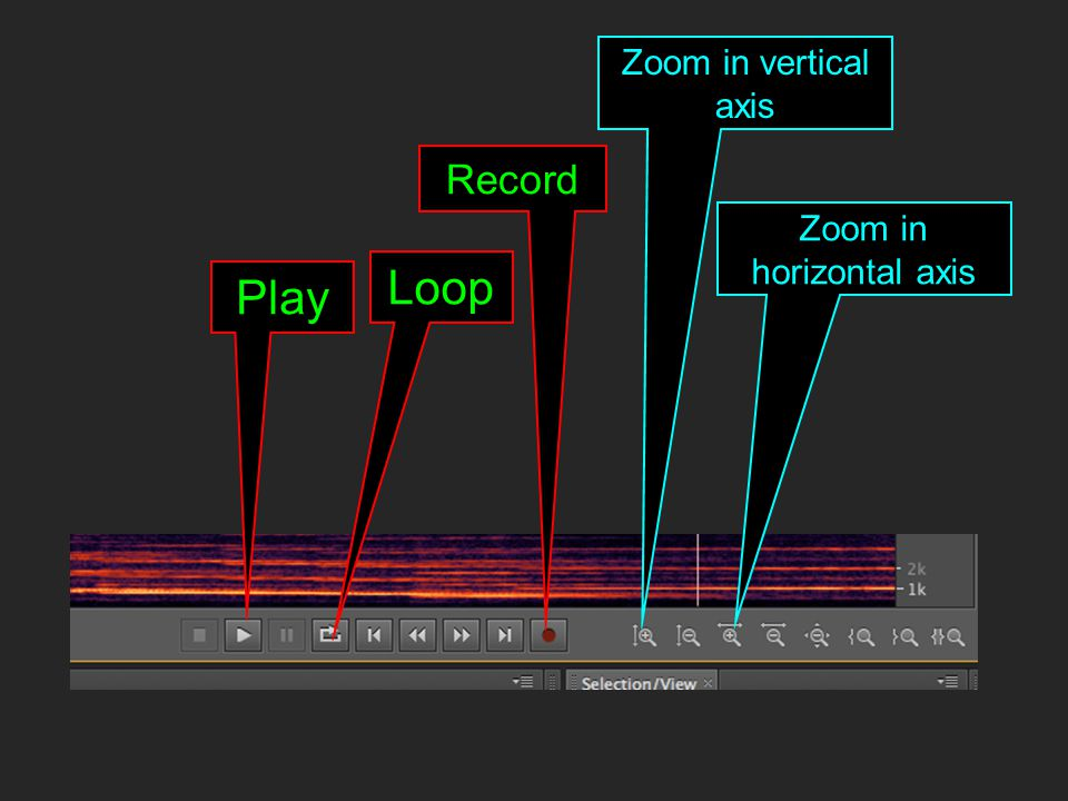 Play Record Zoom in horizontal axis Loop Zoom in vertical axis