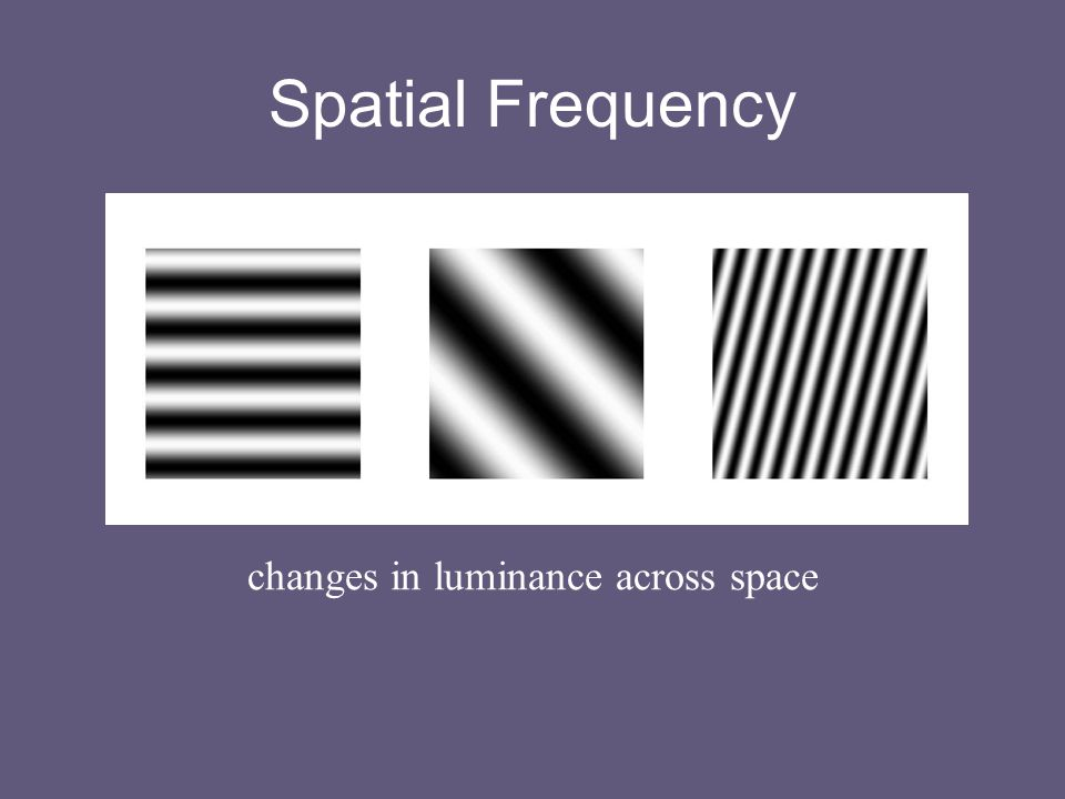 Spatial Frequency changes in luminance across space