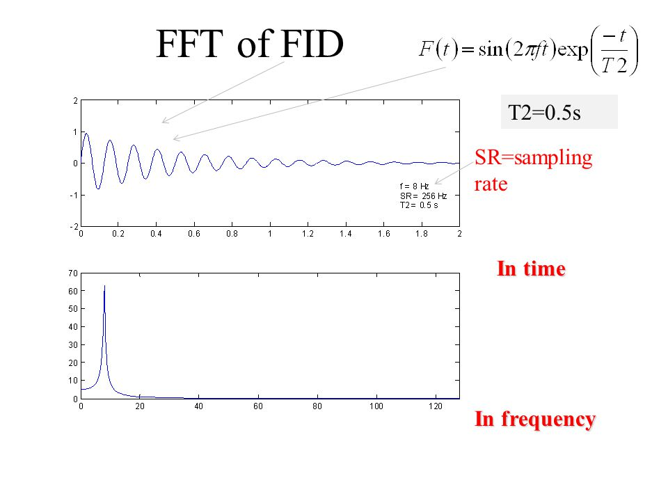 FFT of FID SR=sampling rate In time In frequency T2=0.5s