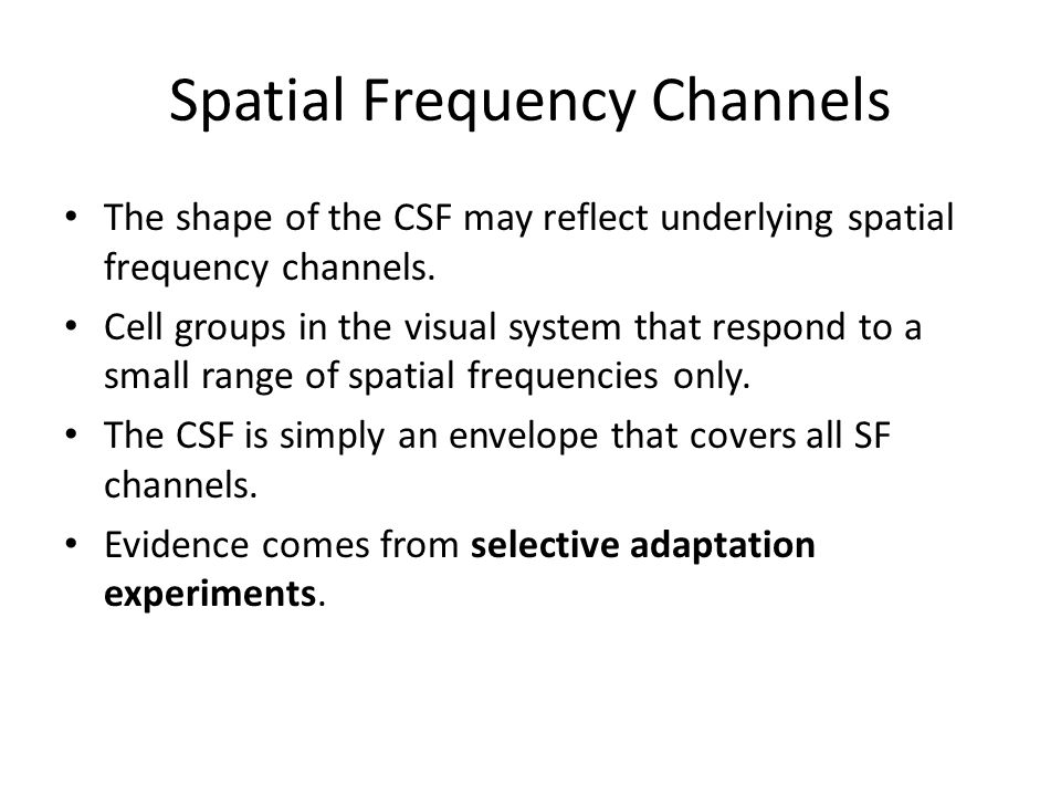 Spatial Frequency Channels The shape of the CSF may reflect underlying spatial frequency channels.