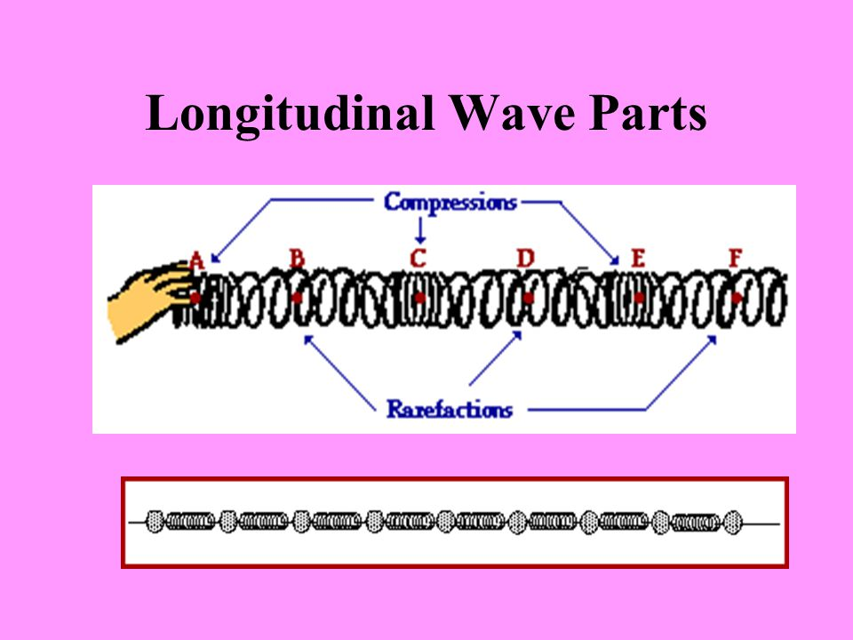 Longitudinal Wave Parts