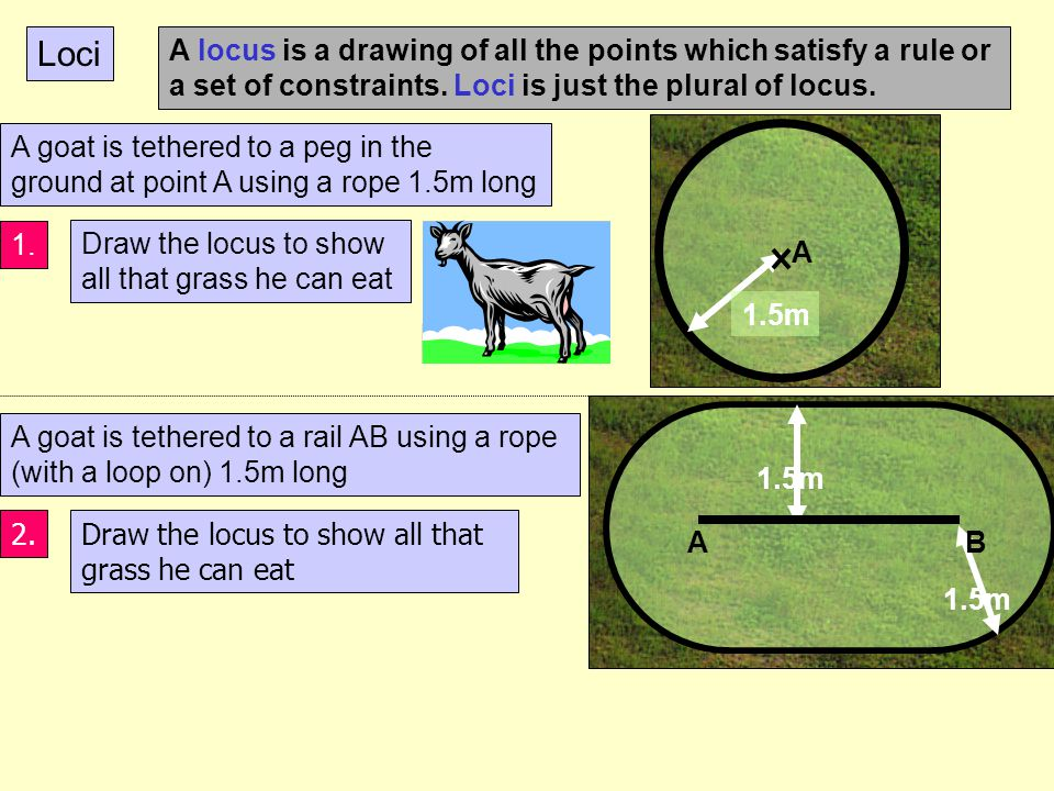 Constructions 90 0 Perpendicular bisector of a line Triangle with 3 side lengths Bisector of an angle 60 0 Have a look at these constructions and work