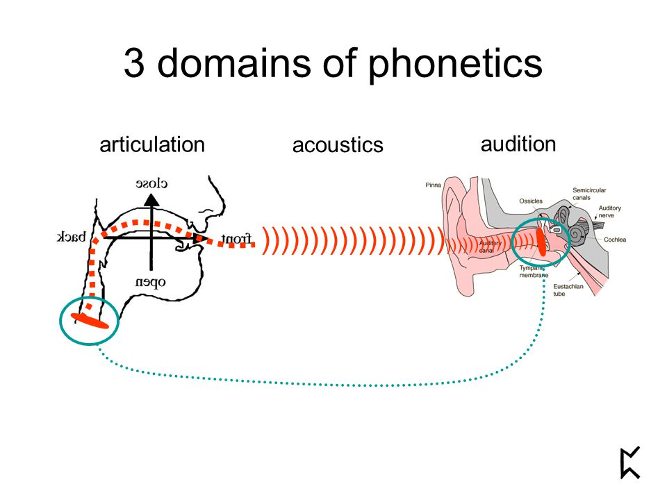 3 domains of phonetics articulation acoustics audition ))))))))))))))))))) ))))))))))))))))