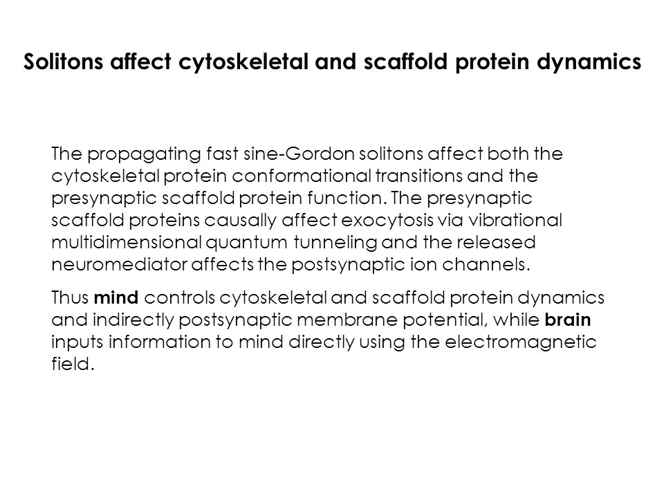 Solitons affect cytoskeletal and scaffold protein dynamics The propagating fast sine-Gordon solitons affect both the cytoskeletal protein conformation