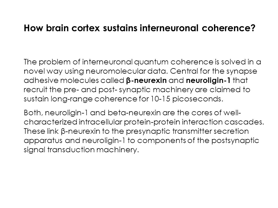 How brain cortex sustains interneuronal coherence? The problem of interneuronal quantum coherence is solved in a novel way using neuromolecular data.