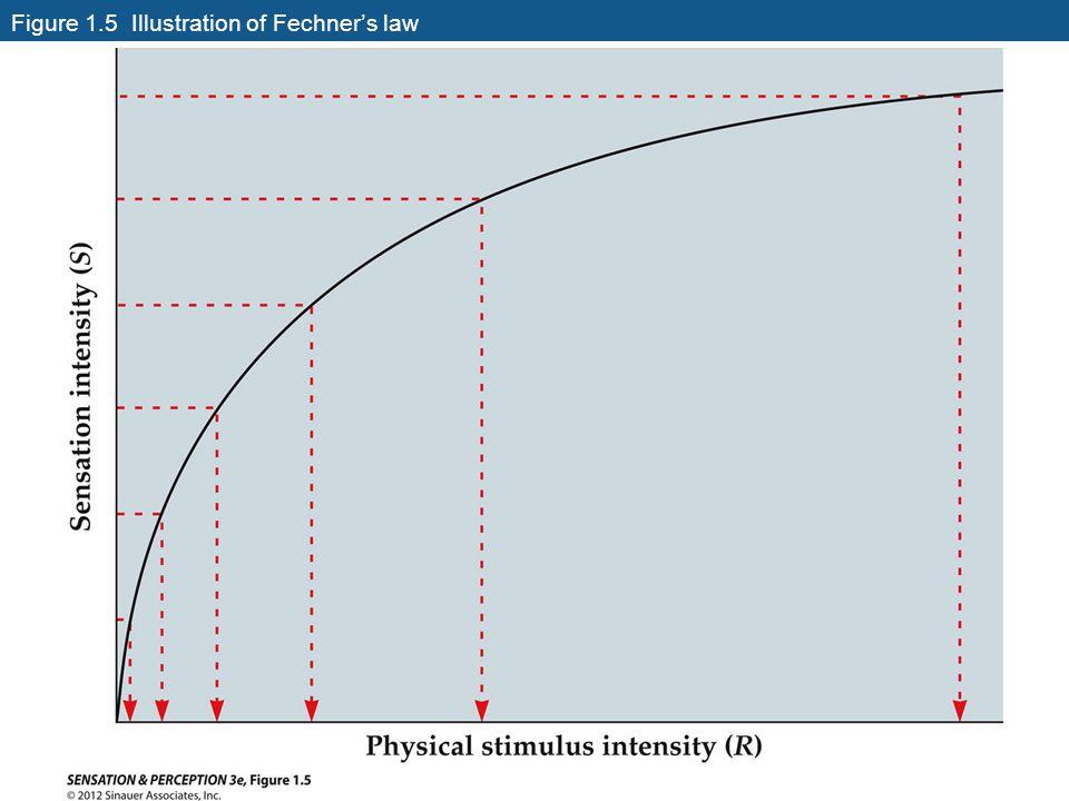 Figure 1.5 Illustration of Fechner's law