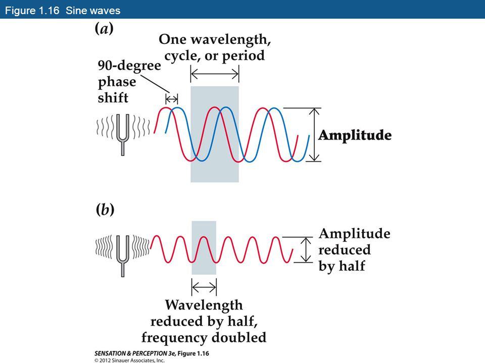 Figure 1.16 Sine waves