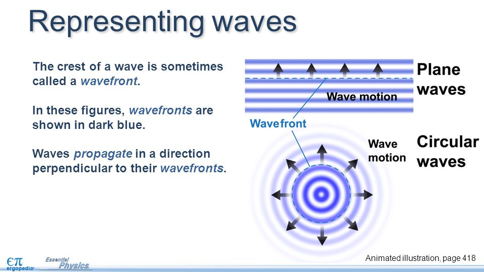 The crest of a wave is sometimes called a wavefront. In these figures, wavefronts are shown in dark blue. Waves propagate in a direction perpendicular