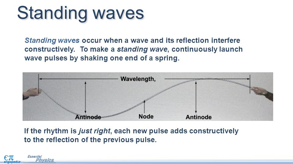 Standing waves occur when a wave and its reflection interfere constructively. To make a standing wave, continuously launch wave pulses by shaking one