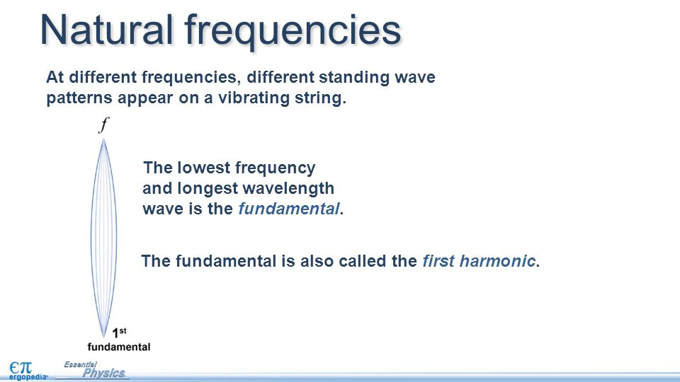 At different frequencies, different standing wave patterns appear on a vibrating string. The fundamental is also called the first harmonic. Natural fr