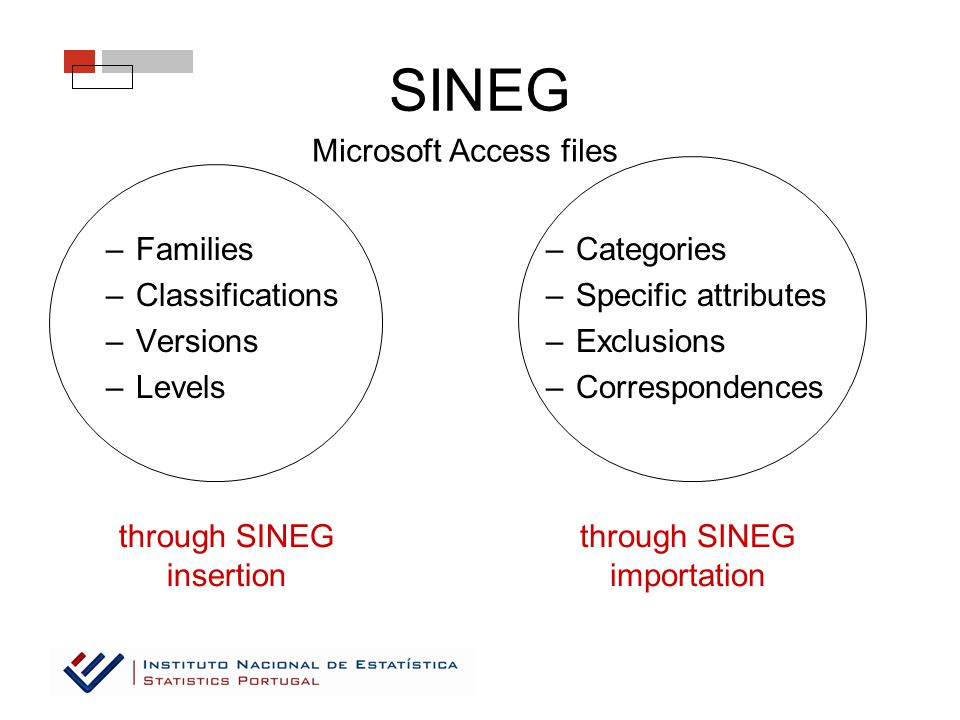SINEG –Families –Classifications –Versions –Levels –Categories –Specific attributes –Exclusions –Correspondences Microsoft Access files through SINEG insertion through SINEG importation