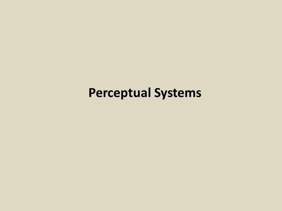 Perceptual Systems