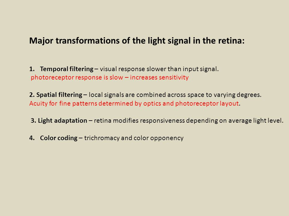 Major transformations of the light signal in the retina: 1.Temporal filtering – visual response slower than input signal.