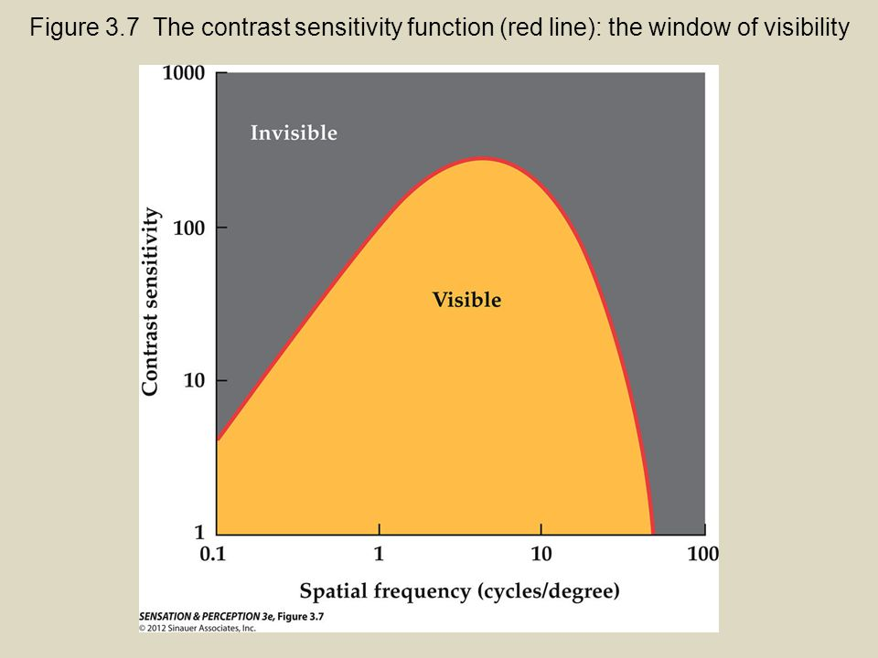 Figure 3.7 The contrast sensitivity function (red line): the window of visibility