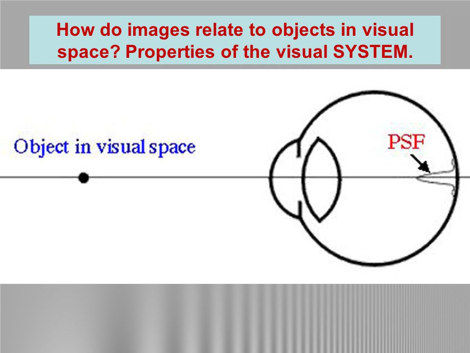 Note: Spatial spectra DO NOT represent position.