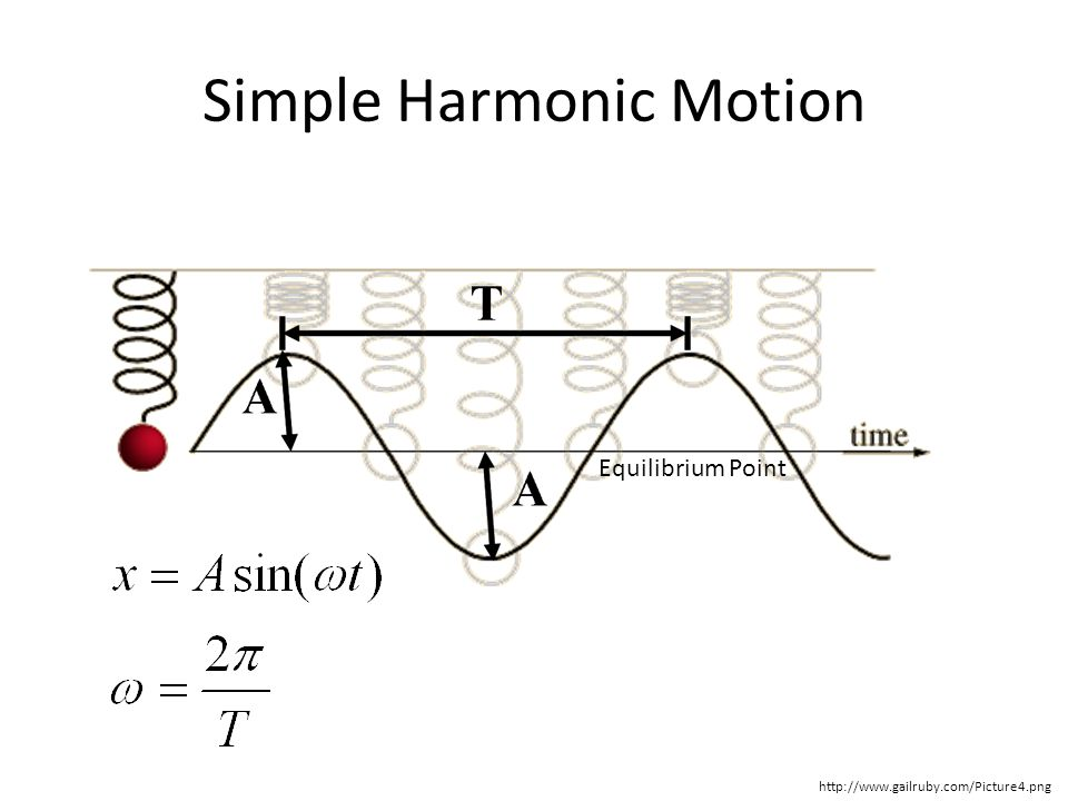 Simple Harmonic Motion Equilibrium Point http://www.gailruby.com/Picture4.png