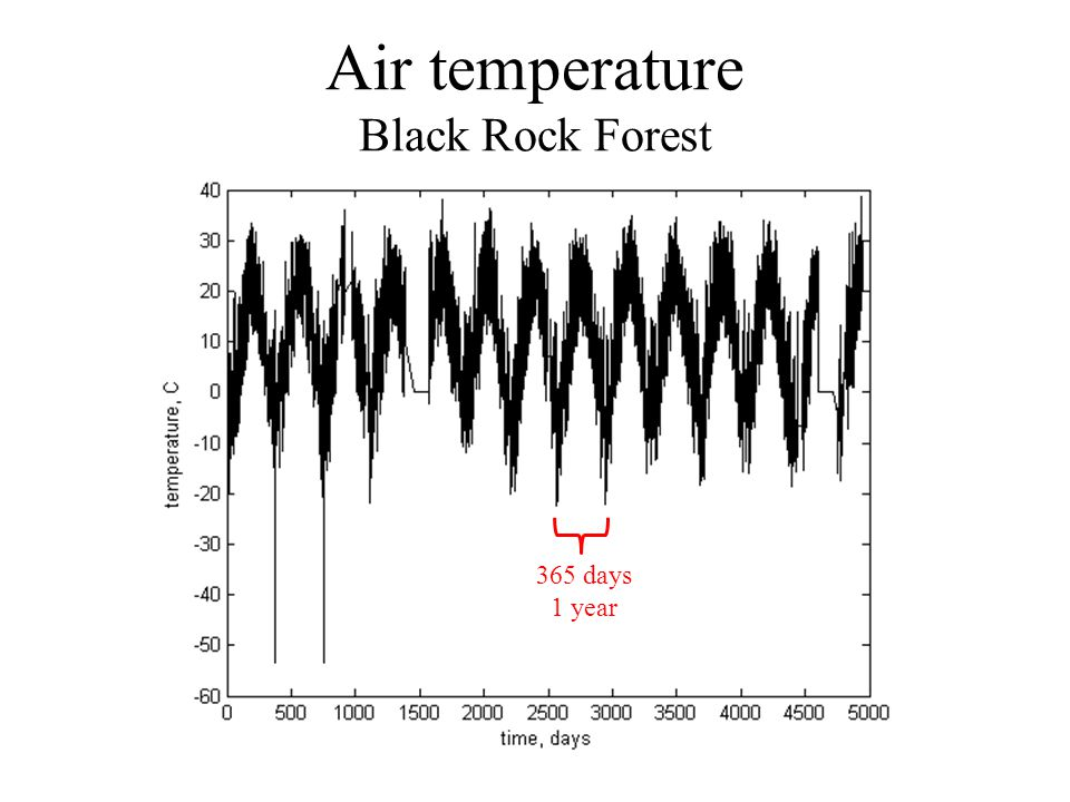 Air temperature Black Rock Forest 365 days 1 year