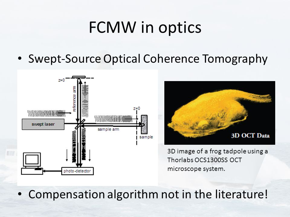 FCMW in optics Swept-Source Optical Coherence Tomography Compensation algorithm not in the literature! 3D image of a frog tadpole using a Thorlabs OCS