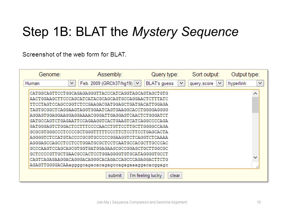 Step 1B: BLAT the Mystery Sequence Jian Ma | Sequence Comparison and Genome Alignment15 Screenshot of the web form for BLAT.