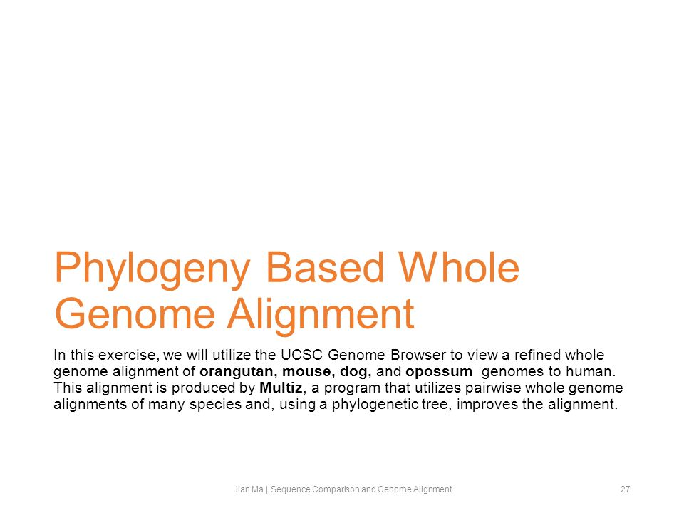 Phylogeny Based Whole Genome Alignment In this exercise, we will utilize the UCSC Genome Browser to view a refined whole genome alignment of orangutan, mouse, dog, and opossum genomes to human.