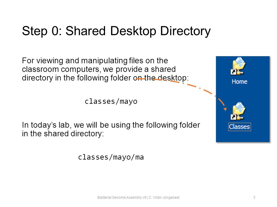 Step 0: Shared Desktop Directory For viewing and manipulating files on the classroom computers, we provide a shared directory in the following folder on the desktop: classes/mayo In today's lab, we will be using the following folder in the shared directory: classes/mayo/ma Bacterial Genome Assembly v9 | C.