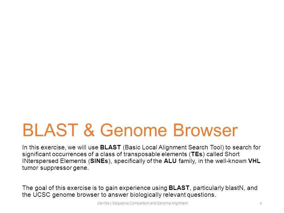 BLAST & Genome Browser In this exercise, we will use BLAST (Basic Local Alignment Search Tool) to search for significant occurrences of a class of transposable elements (TEs) called Short INterspersed Elements (SINEs), specifically of the ALU family, in the well-known VHL tumor suppressor gene.